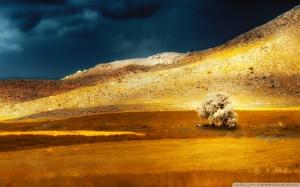 armenia_shaghap_2-wallpaper-960x600